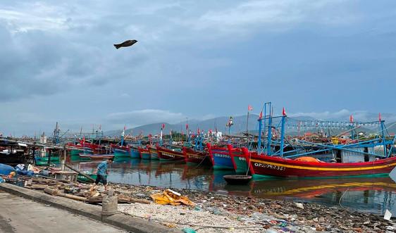 Quảng Bình: Hỗ trợ 21 tỷ đồng cho chủ tàu cá khai thác vùng biển xa