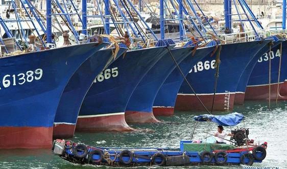 Bão đổ bộ Đông Nam Trung Quốc gây ngập hơn 700km đường bờ biển