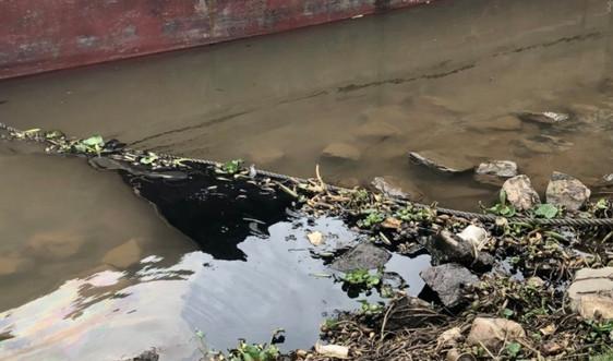 Ninh Bình kiểm tra, xử lý nghiêm các tàu thủy xả dầu thải ra sông Đáy