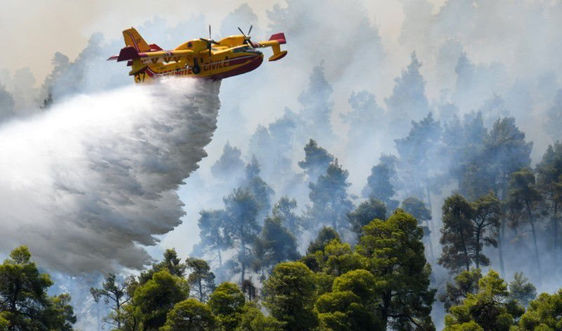 Hàng nghìn người Hy Lạp phải sơ tán do cháy rừng nghiêm trọng