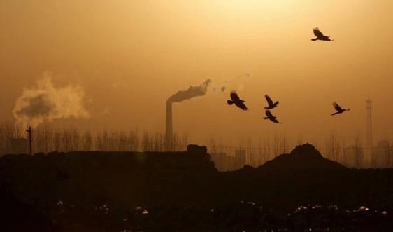 Khử carbon toàn cầu đặt ra thách thức cho các nhà sản xuất thép