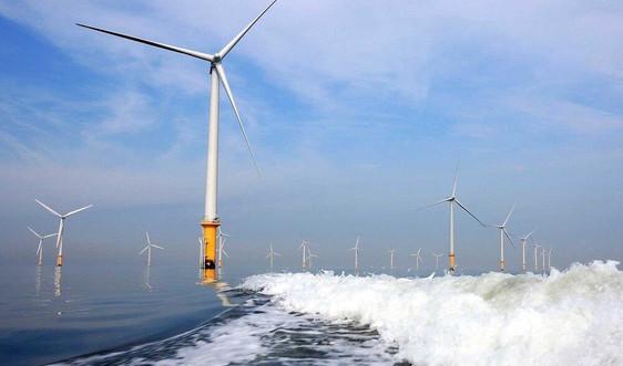 Điện gió ngoài khơi - khai thác năng lượng xanh từ biển: Cần lưu ý đến môi trường và xã hội