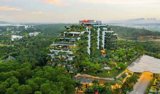 Covid 19 thay đổi bộ mặt ngành du lịch tại Việt Nam như thế nào?