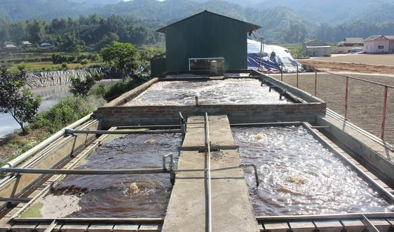 Sơn La: Yêu cầu các cơ sở chế biến nông sản lắp camera giám sát hệ thống xử lý chất thải