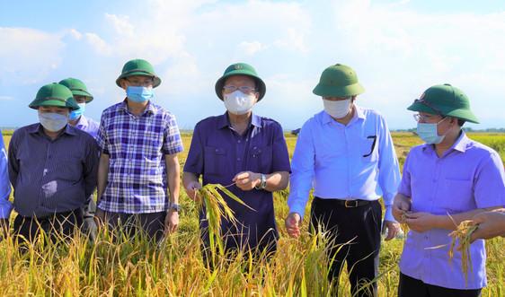 Quảng Trị: Thương lái vào địa bàn tiêu thụ nông sản phải chấp hành nghiêm quy định về phòng dịch Covid-19