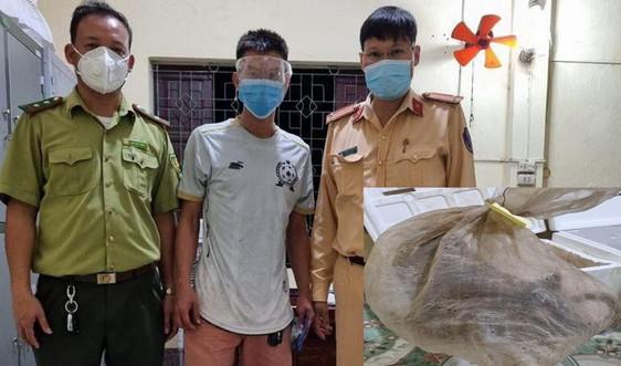 Nghệ An: Bắt vụ vận chuyển 5 cá thể chồn hương