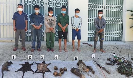 Thừa Thiên Huế: Động vật hoang dã bị sát hại dã man
