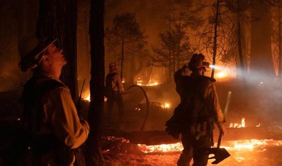 California (Mỹ) đóng cửa khẩn cấp 9 khu rừng quốc gia