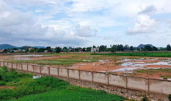 Thanh Hóa: 79 dự án chậm tiến độ hoặc không sử dụng đất