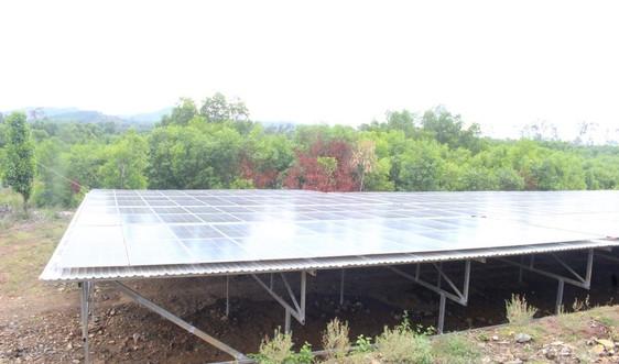 """Quảng Nam: Làm điện mặt trời """"núp bóng"""" nông nghiệp công nghệ cao"""