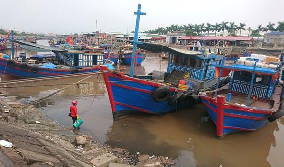 Hải Phòng: Khẩn trương kêu gọi tàu thuyền vào bờ tránh bão Conson