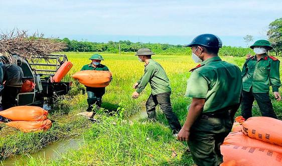 Thanh Hóa: Bí thư huyện và Công an giúp dân thu hoạch lúa tránh bão