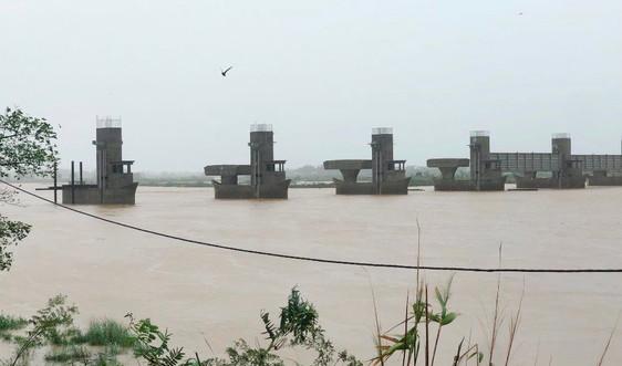Miền Trung: Mưa xối xả, nước lũ lên nhanh và nguy cơ sạt lở ở miền núi