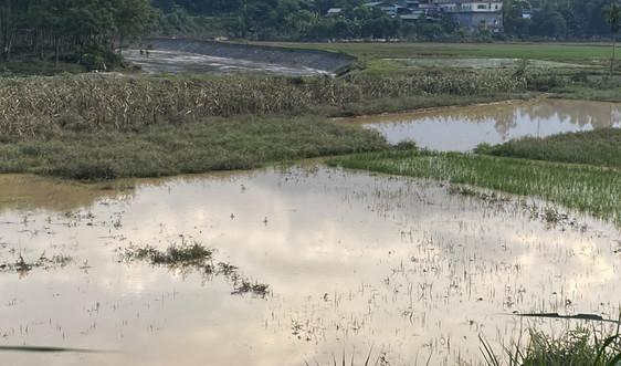 Lào Cai: Mưa lũ gây thiệt hại trên 350 triệu đồng