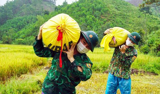 Thừa Thiên- Huế: Bộ đội Biên phòng dầm mưa giúp người dân miền núi thu hoạch lúa