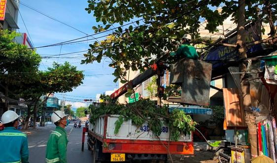 Đà Nẵng: Khẩn trương cắt tỉa cây xanh để ứng phó mùa mưa bão 2021