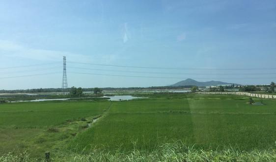 Bà Rịa - Vũng Tàu: Tăng cường quản lý đất có nguồn gốc nông, lâm trường