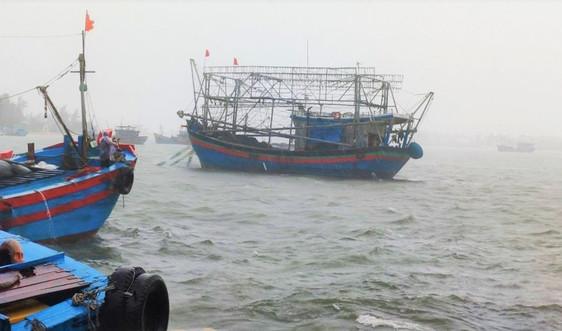 Quảng Nam: Nghiêm cấm tàu thuyền ra khơi từ 10h ngày 23/9
