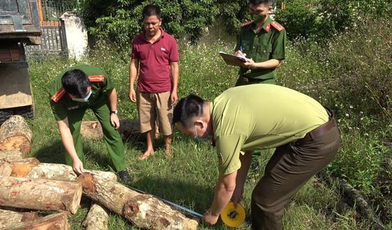 Cao Bằng: Phát hiện, thu giữ hơn 1,9m³ gỗ tự nhiên không rõ nguồn gốc