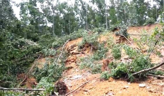 Hà Tĩnh:  Nỗi lo sạt lở đất trong mùa mưa bão