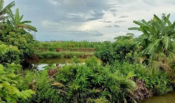 Ninh Giang (Hải Dương): Chính quyền xã cho thuê đất trái thẩm quyền?