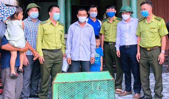 Hà Tĩnh: Bắt được trăn đất trên biển, người dân giao nộp để thả về rừng tự nhiên