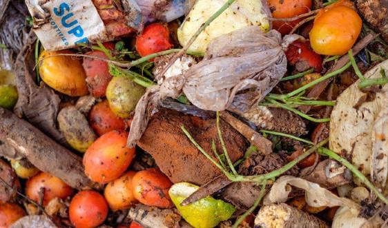 Nỗi lo từ rác thải thực phẩm