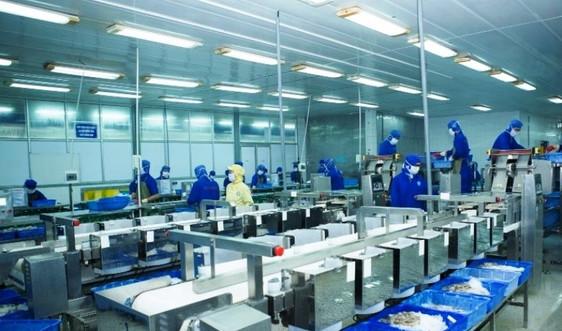 """Đà Nẵng dần hình thành """"doanh nghiệp xanh"""" bảo vệ môi trường trong phòng chống dịch"""