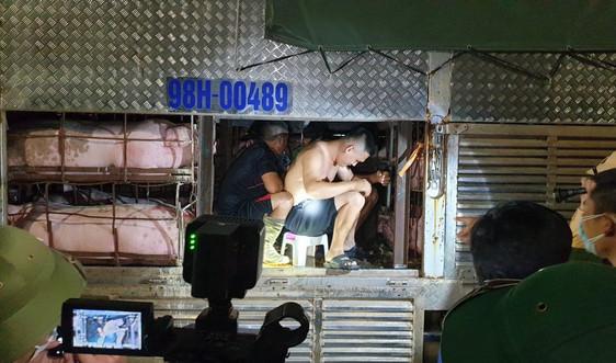 Quảng Ninh: Phát hiện 4 người trốn trên thùng xe chở lợn nhằm 'thông chốt' phòng dịch Covid-19