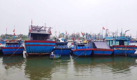 Quảng Nam: Áp thấp nhiệt đới tăng mạnh, cấm tàu thuyền ra khơi