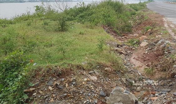 Kim Sơn (Ninh Bình): Đê hữu sông Đáy sạt lở, người dân thấp thỏm lo sợ