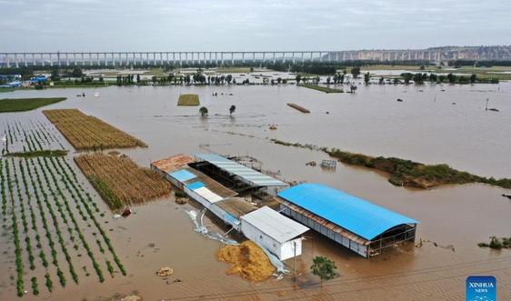 Hơn 120.000 người dân ở Trung Quốc phải sơ tán vì ngập lụt nghiêm trọng