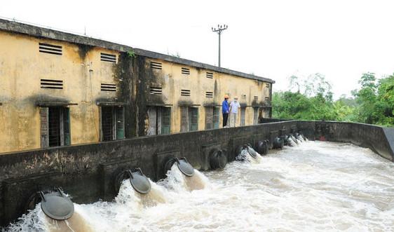 Ninh Bình: Khẩn trương triển khai phương án ứng phó bão số 8