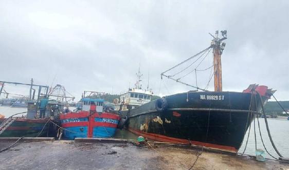 Nghệ An: Cho phép tàu thuyền ra khơi từ 15h chiều nay