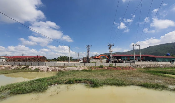 Sai phạm tại Dự án Nhà máy sản xuất nông - lâm sản Vinh Nhất (Thanh Hóa): Cần xử lý nghiêm trách nhiệm