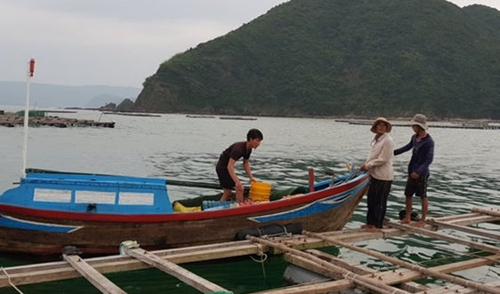 Phú Yên: Phòng chống thiên tai trong tình hình dịch Covid-19