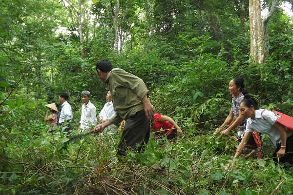Nghệ An: Quyết định phân bổ gần 3.200 tấn gạo cho công tác bảo vệ rừng