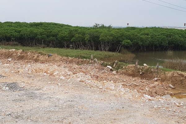 """Hồi âm bài: """"Thanh Hóa """"Ngang nhiên"""" cấp phép xây dựng nhà ở vào khu quy hoạch trồng cây xanh: UBND huyện Tĩnh Gia thu hồi giấy phép xây dựng"""