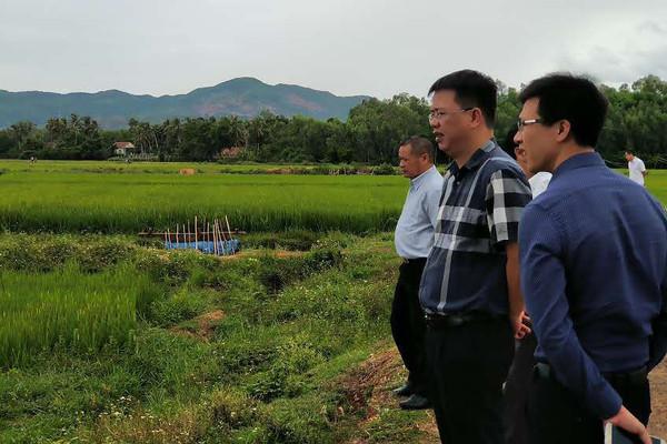 Bộ Tài nguyên và Môi trường: Bám sát diễn biến khô hạn ở miền Trung
