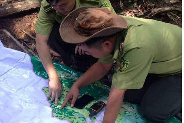 Nghệ An: Tiến độ giao rừng, gắn với giao đất lâm nghiệp và cấp GCNQSDĐ còn chậm