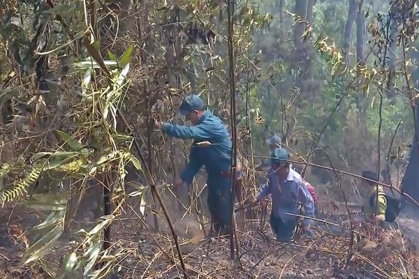 Sơn La: Nỗ lực phòng chống cháy rừng mùa hanh khô