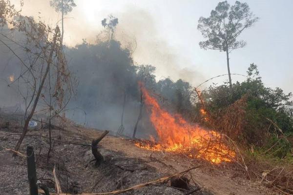 Quảng Nam: Tăng cường phòng chống cháy rừng
