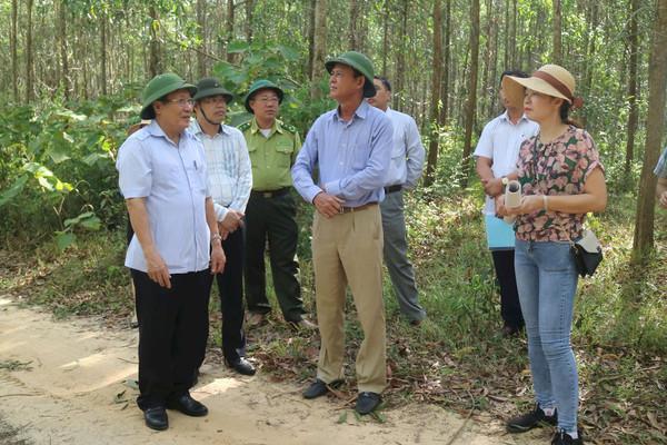 Quảng Trị cần nâng cao cảnh giác trước nguy cơ cháy rừng mùa nắng nóng