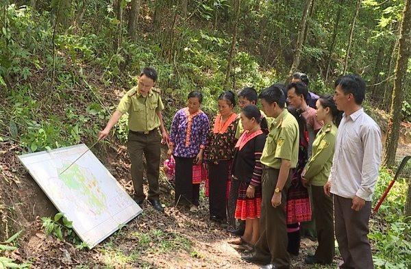 Động lực để người dân Mường Chà (Điện Biên) bảo vệ rừng