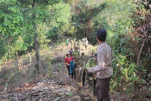 Lai Châu: Tăng cường quản lý bảo vệ và phòng chống cháy rừng