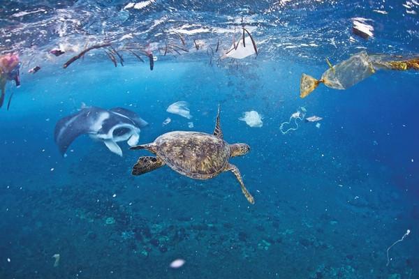 Ngăn ô nhiễm rác thải nhựa đại dương từ nguồn