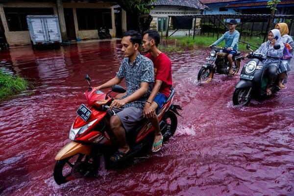 Ngôi làng ở Indonesia chìm trong nước lũ đỏ ngầu