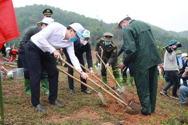 Yên Bái phấn đấu cùng cả nước trồng mới 1 tỷ cây xanh