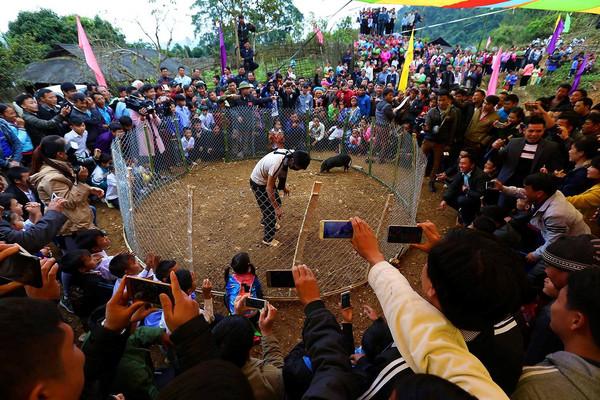 Ngày hội Văn hóa dân tộc Mông tổ chức tại Lai Châu
