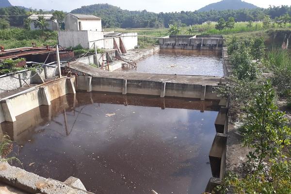 Thanh Hóa: Vi phạm môi trường, công ty Tuấn Vinh bị phạt gần 400 triệu đồng